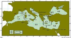Zona FAO 37. Zonas FAO y etiquetado del pescado.